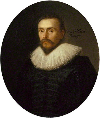 William Harvey, 1627 (attributed to Daniël Mijtens the Elder) (ca. 1590-1648)   National Portrait Galler, London,  NPG 5115